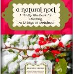 A Natural Noel & Herbal Nurturing {GIVEAWAY!}