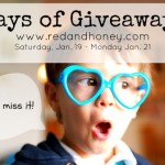 3 Days of Giveaways! (Day One: JM Photography Photo Session!)