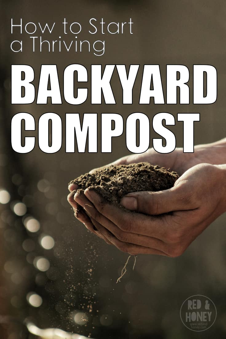 Want to start your own backyard compost for your own amazing, nutrient-rich soil? No problem! This post shares some of our best hints and tips to get your backyard compost bin started, and thriving!