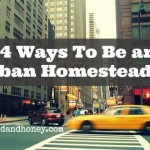 14 Ways to Be an Urban Homesteader