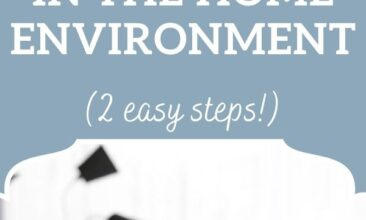 """Pinterest pin, image is of an essential oil diffuser. Text overlay says, """"Tips for Non-Toxic Air in the Home Environment: 2 easy steps!"""""""