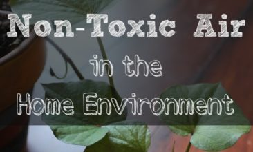 2 Easy Steps for Non-Toxic Air in the Home Environment