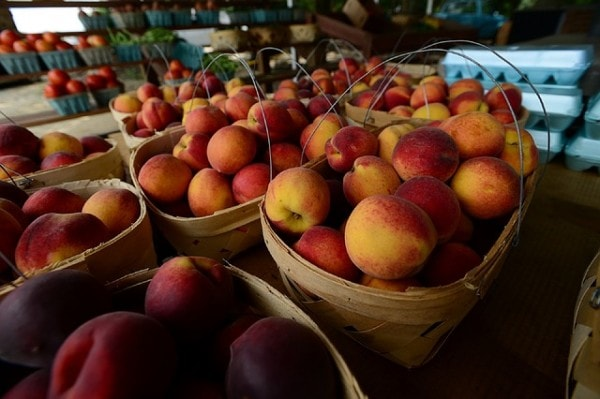 peaches-1095405_640