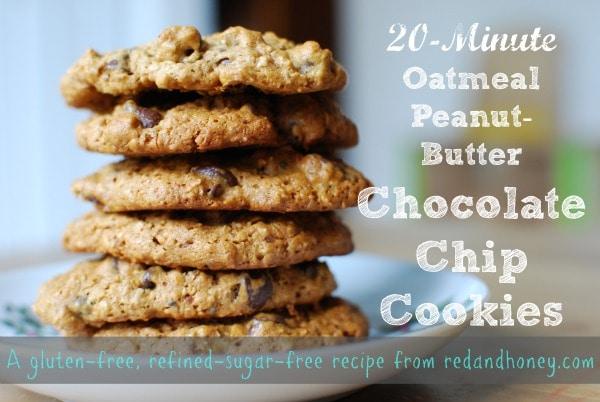 amazinghealthychocolatechipcookies