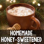 Honey-Sweetened Hot Chocolate