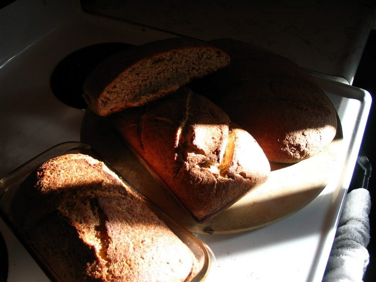 Image is of bread loaves on a counter top, with warm sunlight streaming in over them.