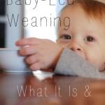 Baby-Led Weaning: What It Is and Why We Love It
