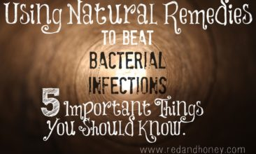 Using Natural Remedies to Beat Bacterial Infections: 5 Important Things You Should Know