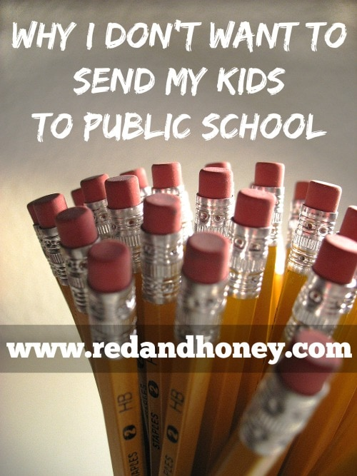 I know that homeschooling is not an option (or a desire!) for everyone – some have no choice but to send their kids to public school for various reasons – and I believe that it is certainly possible to flourish in that system - I just think that the odds are against it.