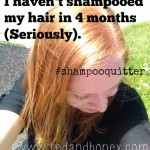 I Haven't Shampooed My Hair in 4 Months (No-Poo Update)