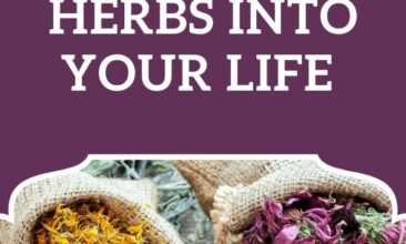 "Pinterest pin, image is of multiple bowls of herbs.. Text overlay says, ""Easy Ways to Introduce Herbs Into Your Life: 5 easy steps!"""