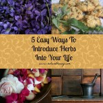 5 Easy Ways to Introduce Herbs Into Your Life
