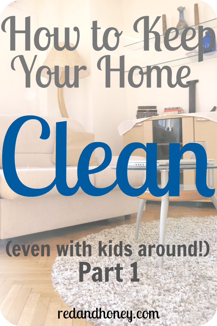 It does take work to keep a home bustling with activity in an orderly state but it doesn't have to take a lot.  With a few simple strategies and healthy ways of thinking about our homes, we can keep them in an orderly state and keep our focus on our families, instead of scrub brushes and vacuums.