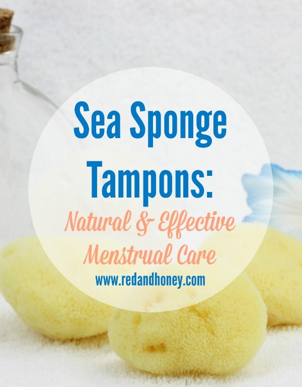 REUSABLE Sea Sponge Tampons?! They are for real, friends. And they are AMAZING. Seriously wish I had learned about them sooner!