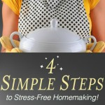 FREE Mini Video e-Course for Overwhelmed Homemakers! Limited Time Only.