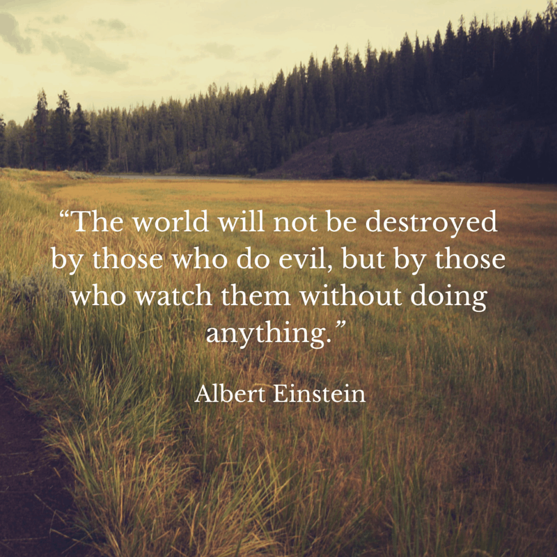 """The world will not be destroyed by"