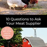 """Pin collage, top image is of chickens and roosters pecking the ground for food, the bottom image is of a red farm house in a field of gold wheat. Text Overlay reads """"10 Questions to Ask Your Meat Supplier"""""""