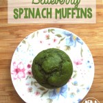 Blueberry Spinach Muffin Recipe