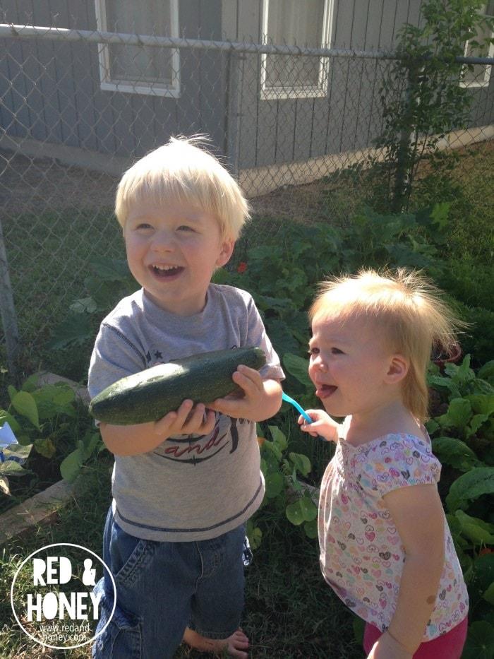 Growing Little Gardeners2