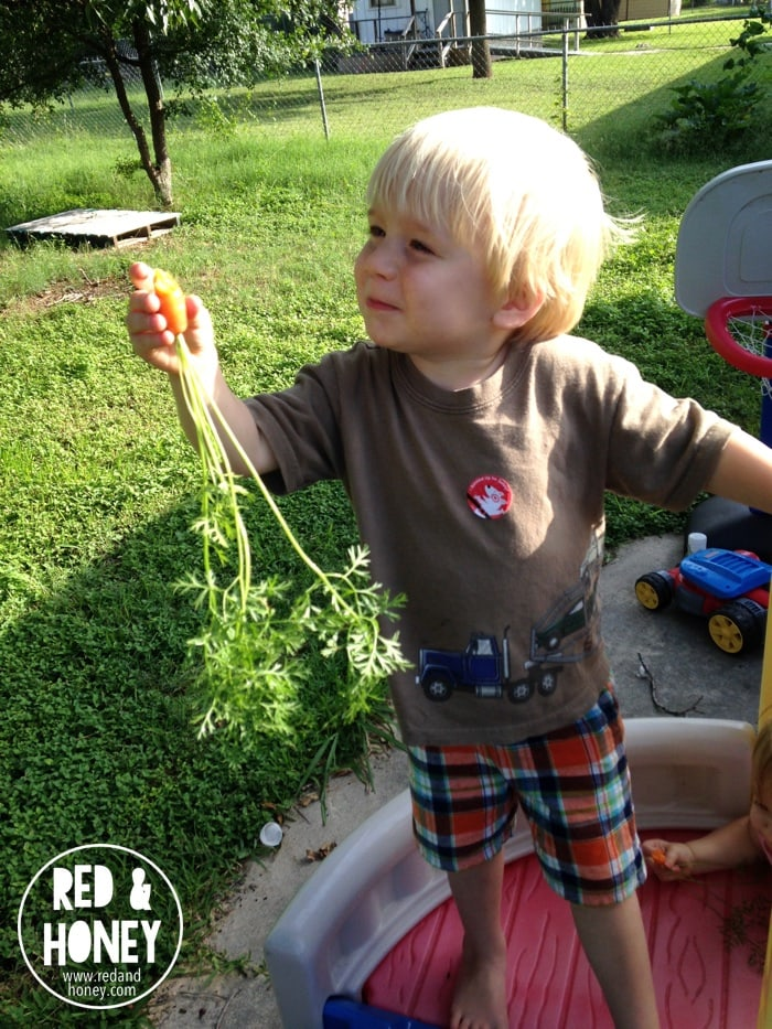 Growing Little Gardeners3