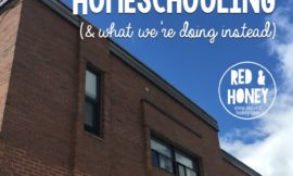 Why We're Quitting Homeschooling