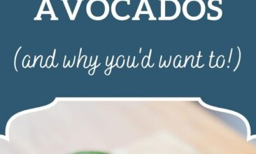 """Pinterest pin, image is of an avocado cut in half on a cutting board. Text overlay says, """"5 Ways to Eat More Avocados: & why you'd want to!"""""""