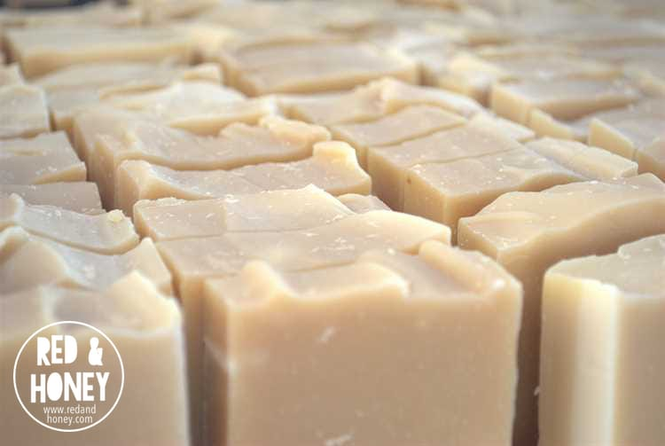 The Science of Soap - R&H4