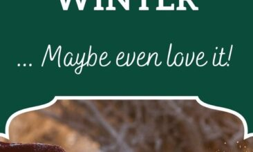 """Pinterest pin, image is of a woman blowing snow off her gloves. Text overlay says, """"28 Reasons Not To Hate Winter: maybe even love it!"""""""