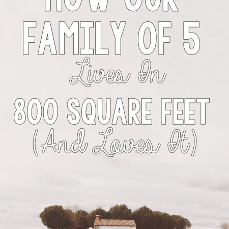 How Our Family of 5 Lives in 800SqFt and Loves It - R&H main