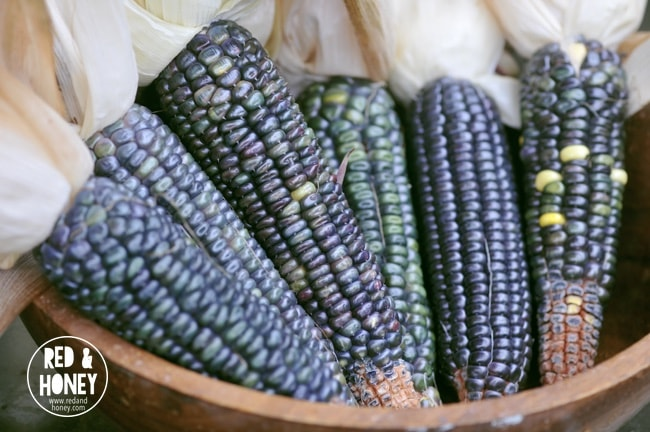An image of blue milpa in a wooden bowl.