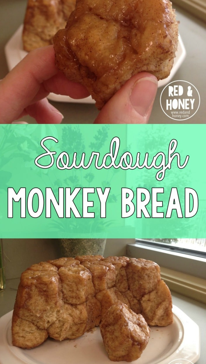 Gooey, cinnamony, delicious, combined with the nourishing goodness of traditional sourdough. Need I say more?! YUM.