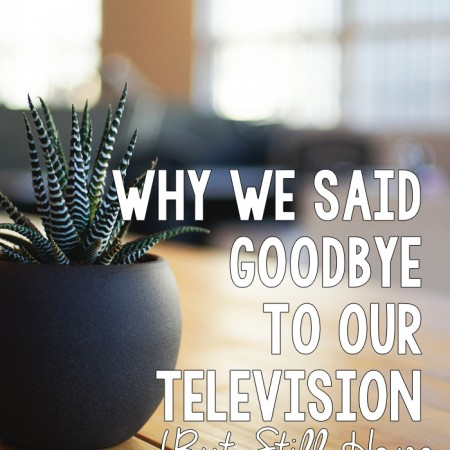 Why We Said Goodbye to Our Television - R&H main