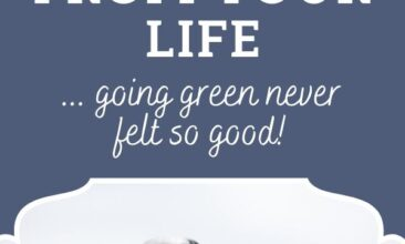 """Pinterest pin, image is of a hand holding a stainless steel water bottle. Text overlay says, """"20 Ways to Ditch Toxic Chemicals From Your Life: Going Green Never Felt So Good""""."""