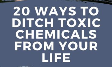 "Pinterest pin with two images. One image is of a hand holding a stainless steel water bottle. Second image is of a woman holding a baby up in the air. Text overlay says, ""20 Ways to Ditch Toxic Chemicals From Your Life: Going Green Never Felt So Good""."