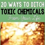 20 Ways to Ditch Toxic Chemicals From Your Life