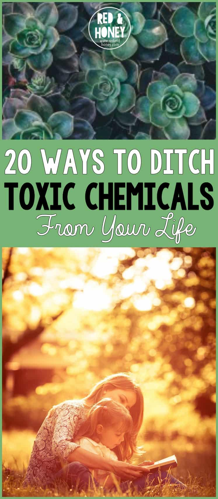 When I first started to experience chronic health issues, and realized the importance of reducing the toxic burden on my body, I was shocked at how harsh the products are that we use in and around our bodies every day! After cutting out the toxic chemicals in many areas of my life these past few years, I've noticed a huge difference in how I feel.