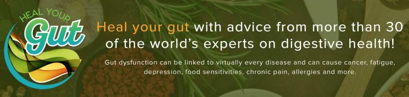 heal-your-gut-banner