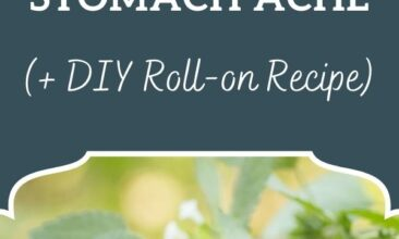 """Pinterest pin, image is of a bottle of essential oil sitting on a counter with a plant in the background. Text overlay says, """"Essential Oils for Digestion and Stomach Ache (DIY Roll-On Recipe)"""""""