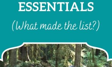"""Pinterest Pin image is of a dad carrying a baby in a carrier on his back walking over a bridge through the woods. Text overlay says, """"A Crunchy Minimalist Mom's List of Baby Essentials: what made the list?"""""""