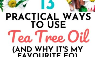 """Pinterest Pin with two images. First image is of plants and fruit on a white table and second image is of an essential oil bottle with plant leaves on a table. Text overlay says, """"Ways to Use Tea Tree Oil - 13 practical uses!""""."""