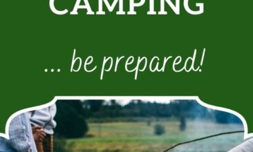 """Pinterest pin, image is of some kids holding sticks over a low fire. Text Overlay says: """"6 Best Essential Oils to Take Camping"""""""