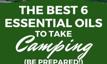"""Pinterest pin with two images. Top image is a woman holding a cup of coffee sitting in the woods. Bottom image is of some kids holding sticks over a low fire. Text Overlay says: """"6 Best Essential Oils to Take Camping"""""""