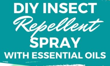 """Pinterest pin with two images. One image is of an amber glass spray bottle labeled """"Bug Off"""". Second image is another angle of the spray bottle. Text overlay says, """"DIY Insect Repellent Spray: that works!"""""""