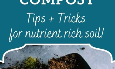 "Pinterest pin, image is of a pile of dirt and a scoop. Text overlay says, ""How to Start a Successful Backyard Compost: tips & tricks for nutrient rich soil""."