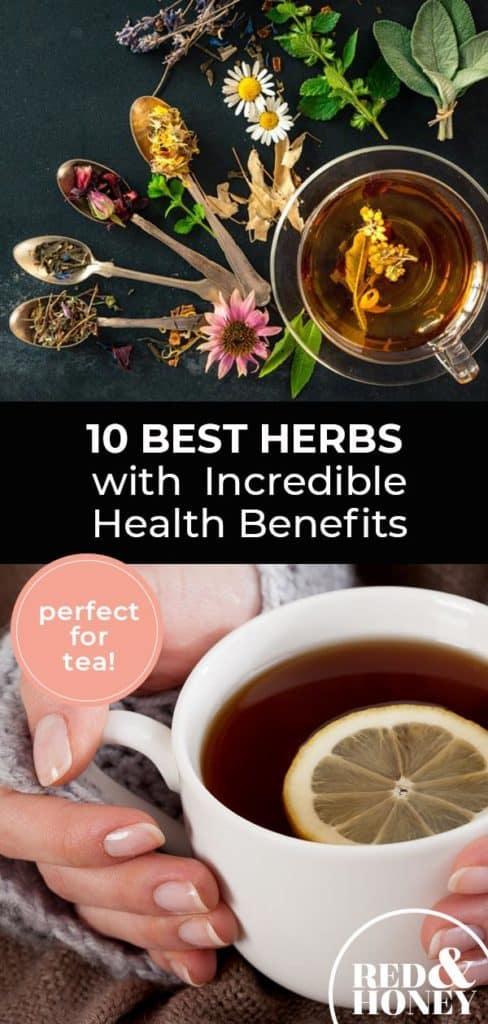 "Longer Pinterest pin with two images. Top image is of gold spoons holding dried herbs and flowers. Lower image is of a woman's hand holding a cup of tea with a slice of lemon in it. Text overlay says, ""10 Best Herbs with Incredible Health Benefits - perfect for tea!"""