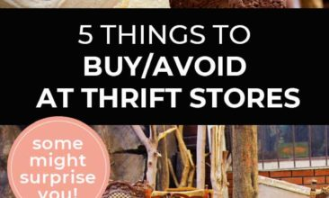 "Longer Pinterest pin with two images. First image is of a closet with clothes hanging on wooden hangers. Second image is of a bunch of dining table chairs. Text overlay says, ""5 Things to buy/avoid at thrift stores - some might surprise you!"""