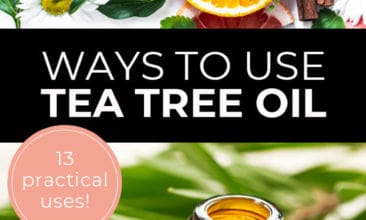"""Longer Pinterest Pin with two images. First image is of plants and fruit on a white table and second image is of an essential oil bottle with plant leaves on a table. Text overlay says, """"Ways to Use Tea Tree Oil - 13 practical uses!""""."""