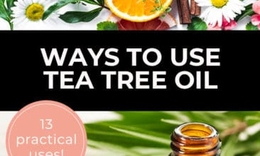 "Pinterest Pin with two images. First image is of plants and fruit on a white table and second image is of an essential oil bottle with plant leaves on a table. Text overlay says, ""Ways to Use Tea Tree Oil - 13 practical uses!""."