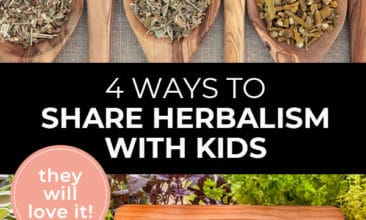 """Pinterest pin with two images. Top image is of 6 large wooden spoons filled with dried herbs. Bottom image is of fresh herbs piled on a table with a chalkboard sign that says """"Herb Garden"""". Text overlay says, """"4 Ways to Share Herbalism with Kids: they will love it!"""""""