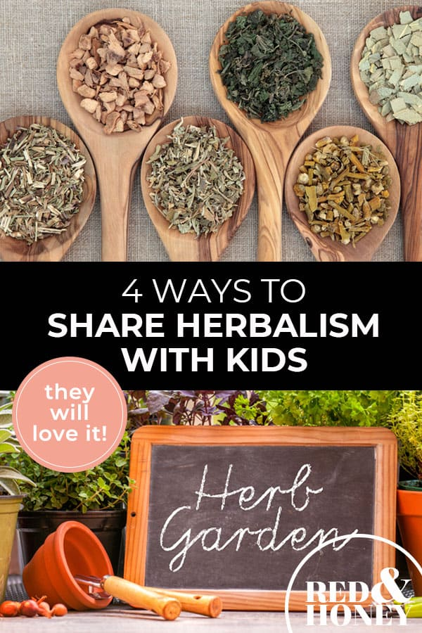 "Pinterest pin with two images. Top image is of 6 large wooden spoons filled with dried herbs. Bottom image is of fresh herbs piled on a table with a chalkboard sign that says ""Herb Garden"". Text overlay says, ""4 Ways to Share Herbalism with Kids: they will love it!"""